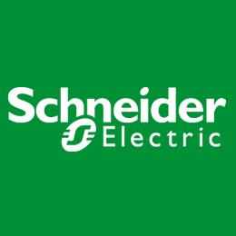 Schneider Electric_100R202